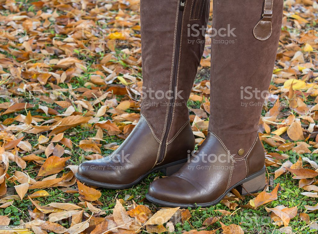 Pair of female brown boots on autumn leaves stock photo