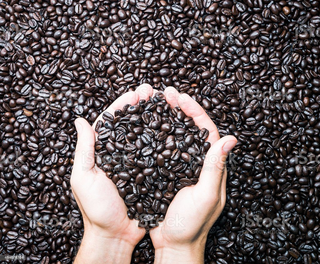 Pair of hands holding coffee beans stock photo