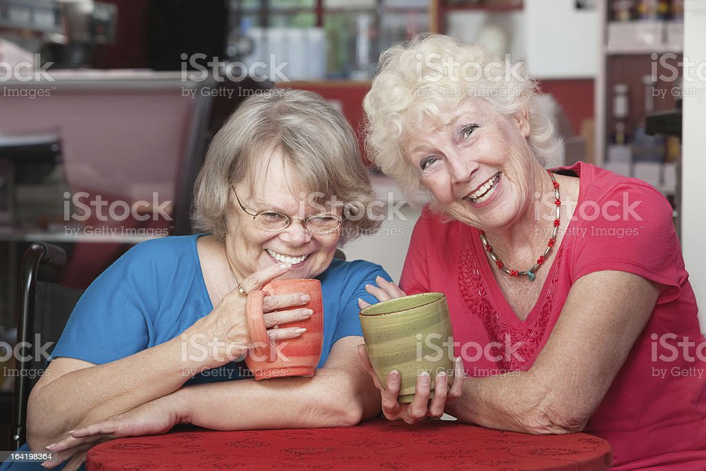 Pair of Happy Friends royalty-free stock photo