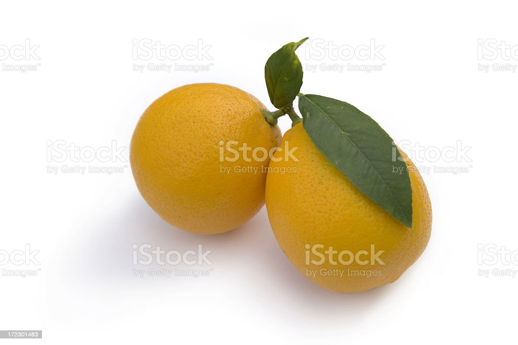 Pair of Meyer Lemons with leaves royalty-free stock photo