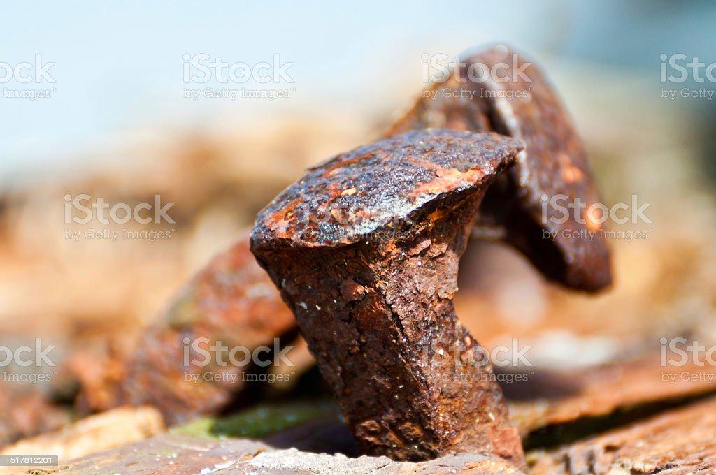 Pair of nails stock photo