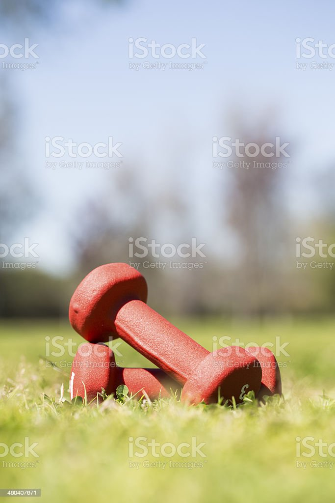 Pair of red hand weights stock photo