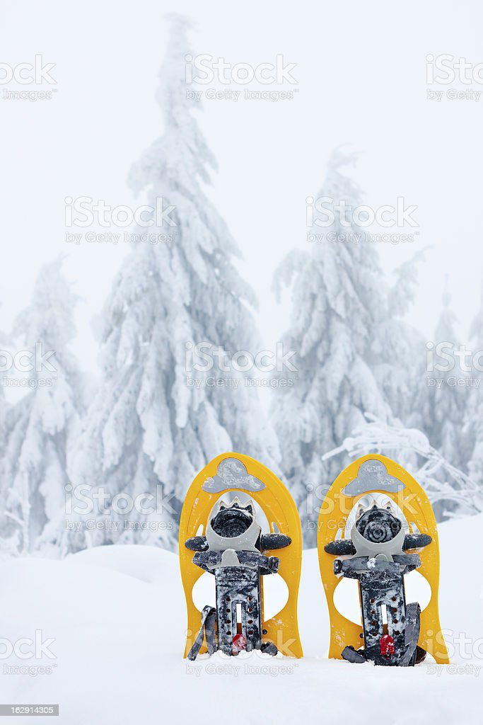 pair of showshoes in the snow royalty-free stock photo