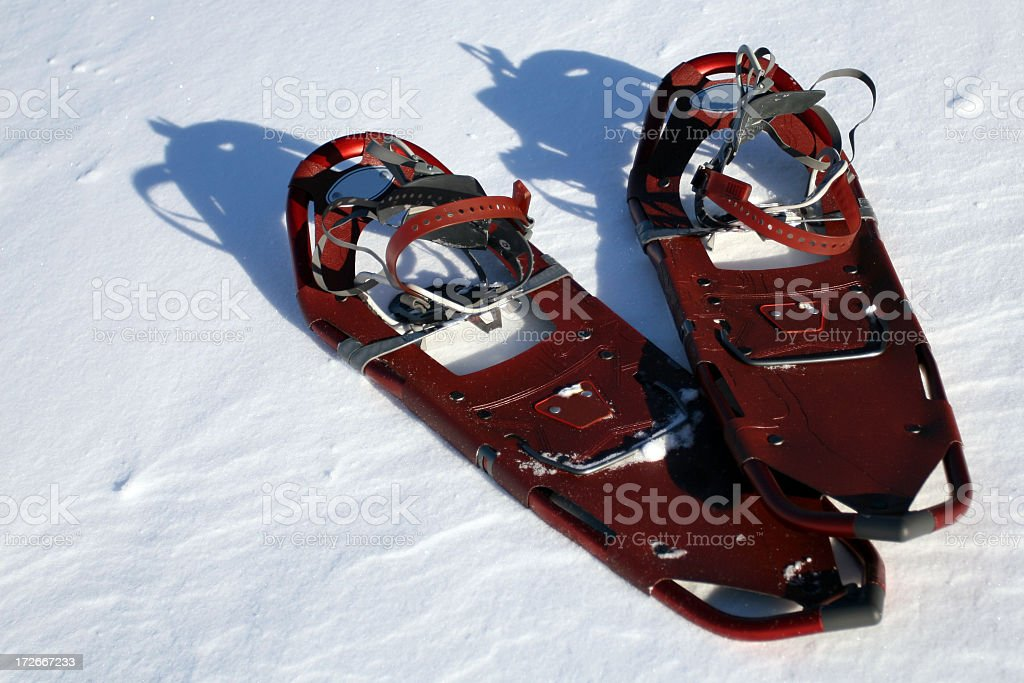 Pair of Snowshoes on Powder Snow royalty-free stock photo