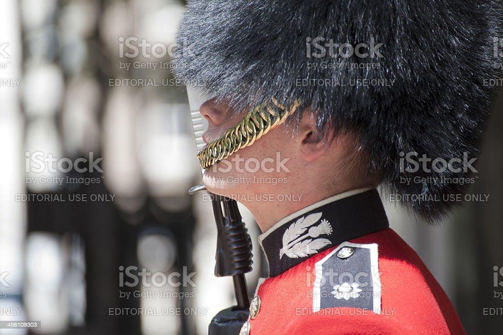 Palace Guard royalty-free stock photo