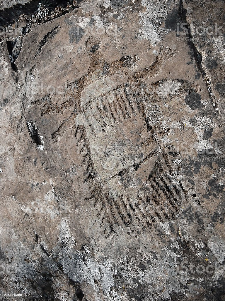 Palaeolithic unknown object Petroglyph stock photo