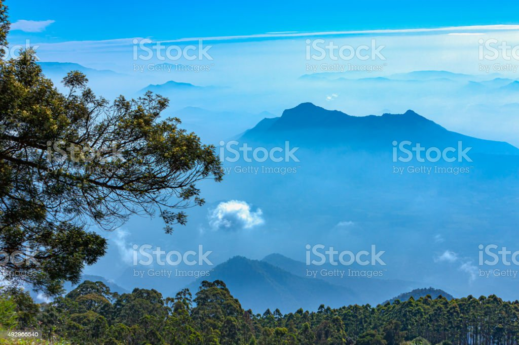 Palani Hills, Tamil Nadu, India stock photo