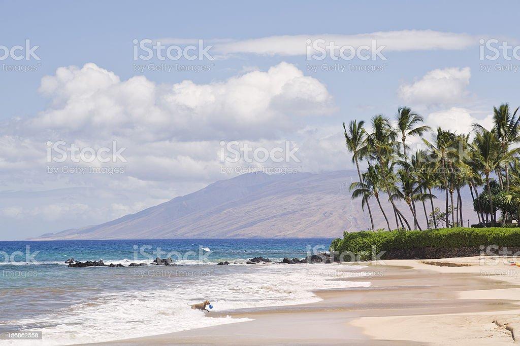 Palauea beach, South Maui, Hawaii stock photo