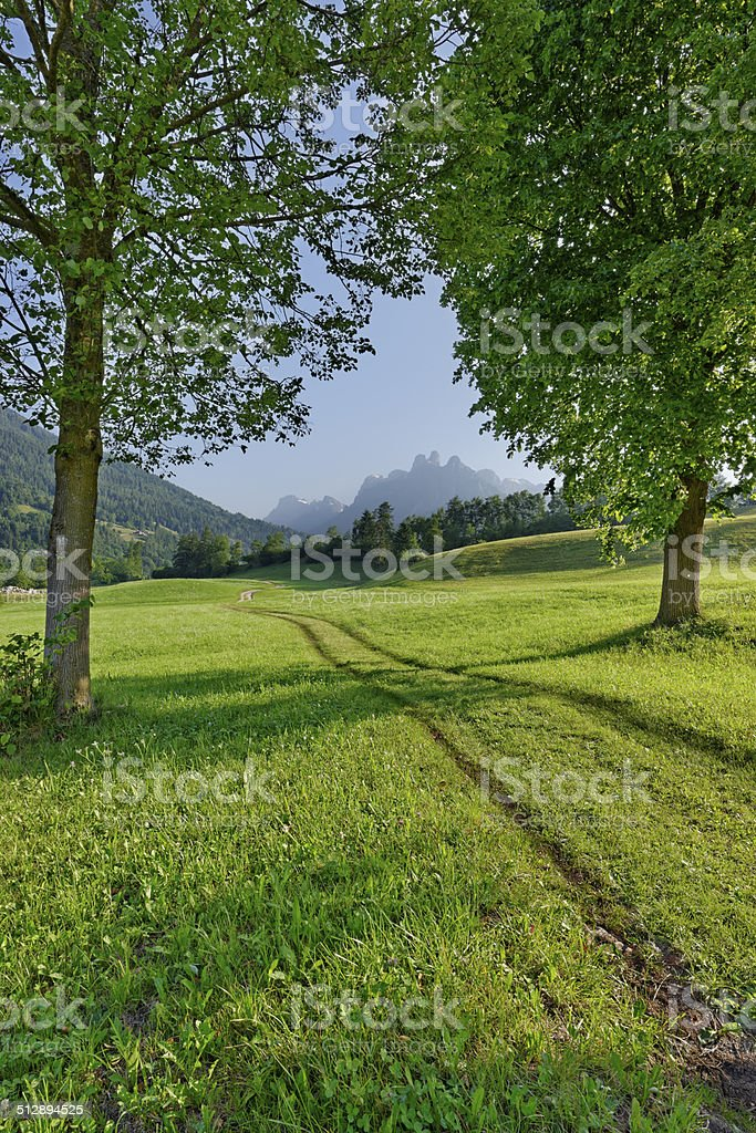 Pale di San Martino from the meadows of Navoi stock photo