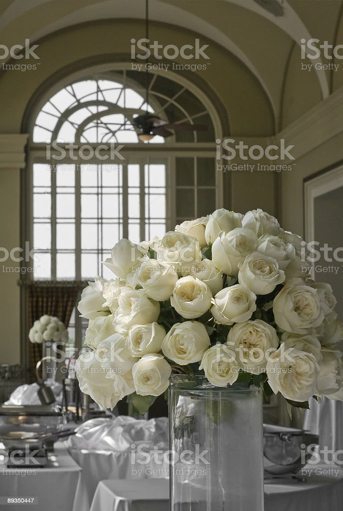 Pale Yellow Roses royalty-free stock photo