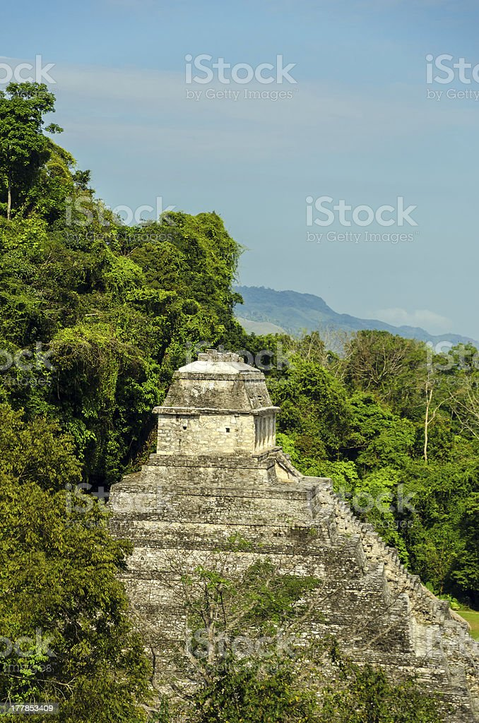 Palenque Temple royalty-free stock photo