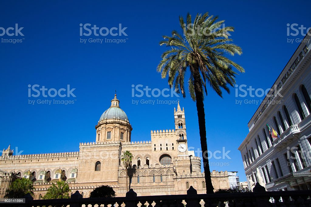 Palermo, Sicily: Cathedral with Blue Dome, Palm Tree, Indigo Sky stock photo