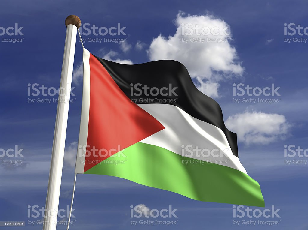 Palestine flag (with clipping path) stock photo