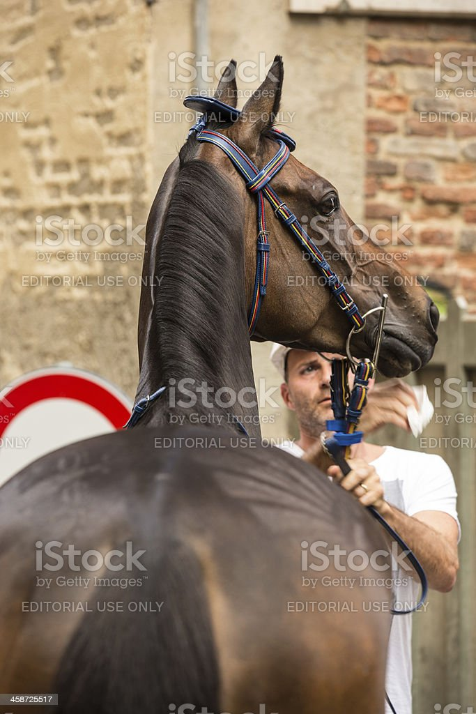 Palio preparations in historic Siena royalty-free stock photo