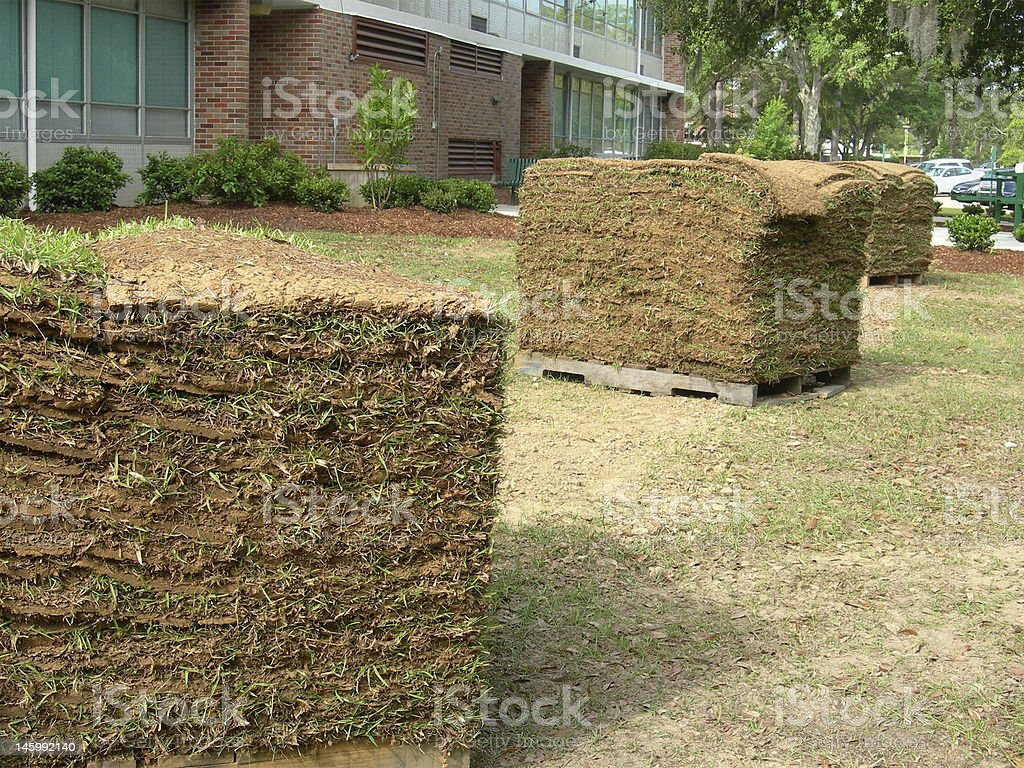 Pallets of Sod royalty-free stock photo