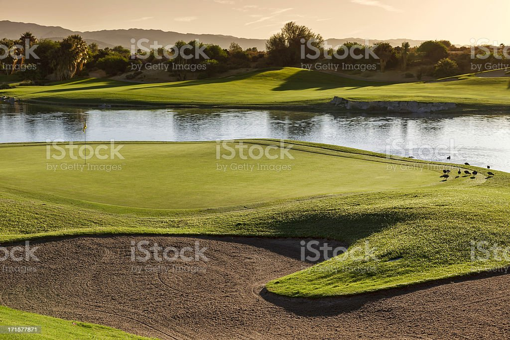 Palm Desert Golf Course royalty-free stock photo