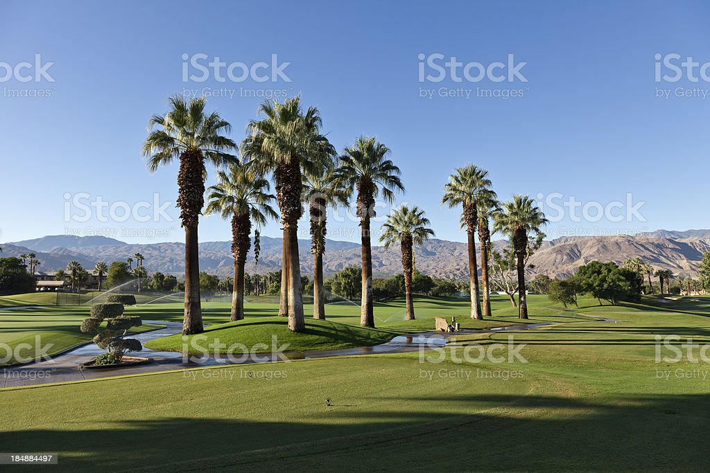 Palm Desert Golf Landscape stock photo
