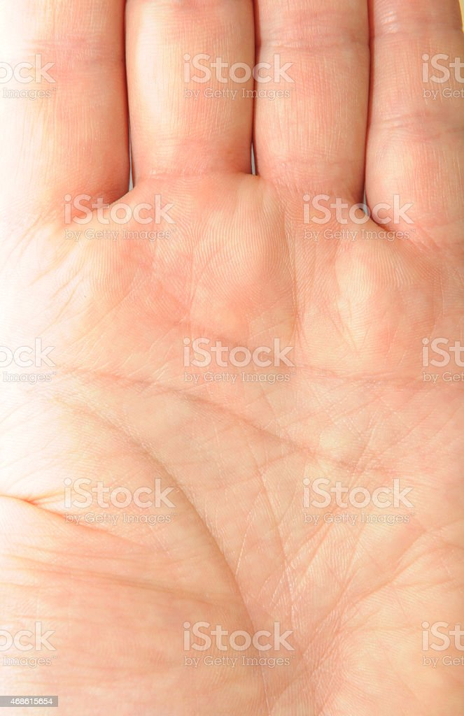 Palm detail stock photo