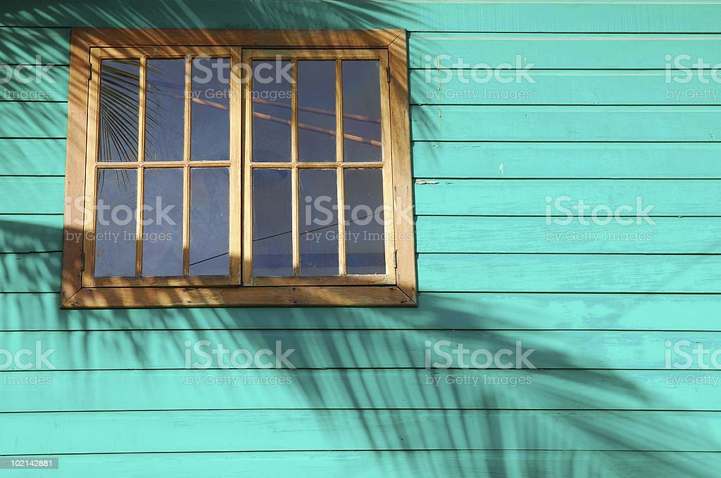 Palm Frond Shadow on House Exterior royalty-free stock photo