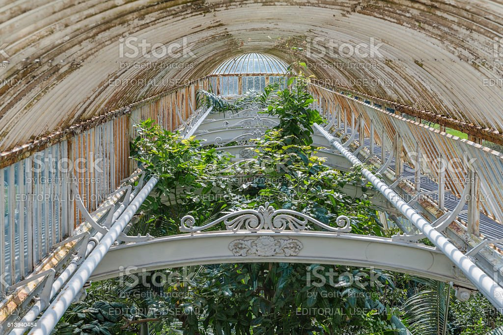 Palm House in Kew Gardens, London stock photo