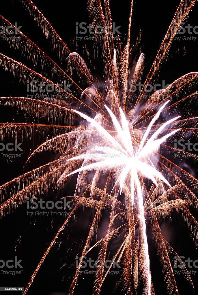 Palm like fireworks royalty-free stock photo