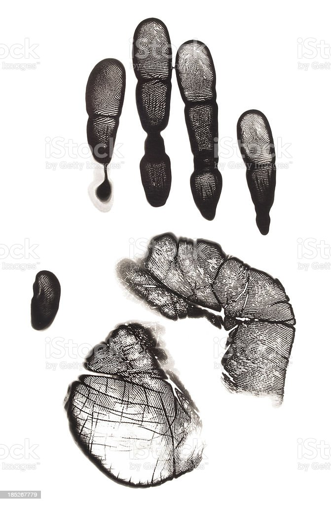 Palm of hand print on photo paper royalty-free stock photo