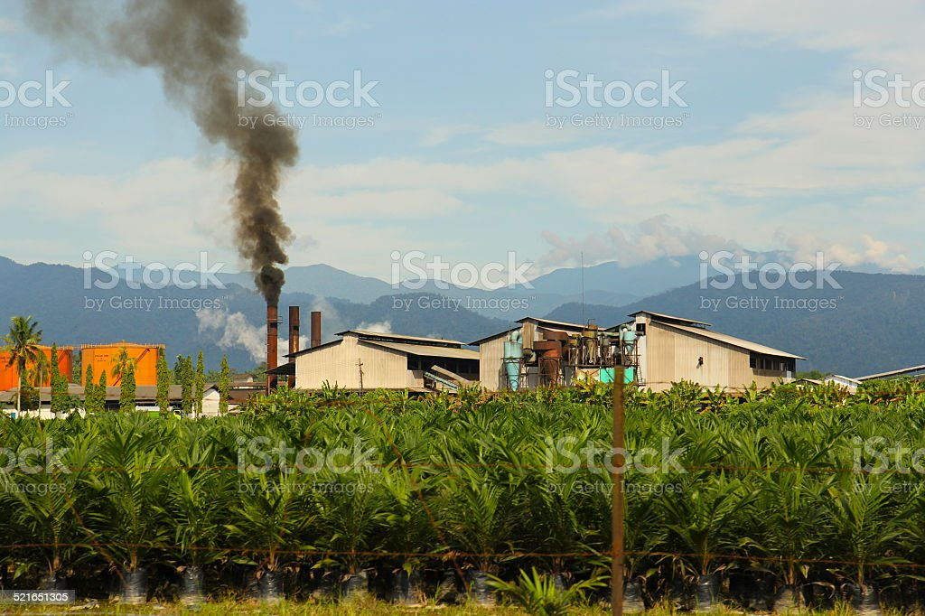 Palm oil factory, Sumatra Indonesia stock photo