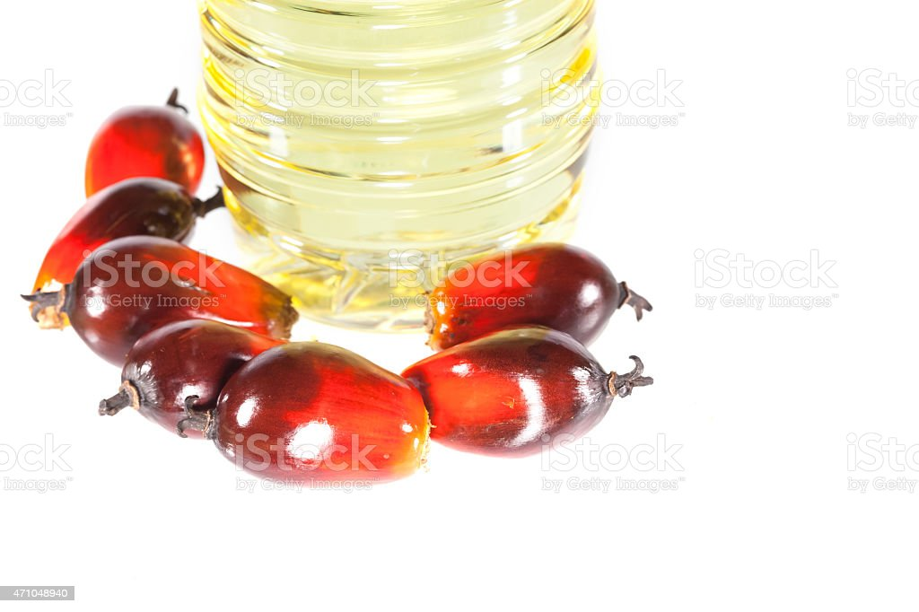 Palm oil fruits laying beside a bottle of cooking oil stock photo