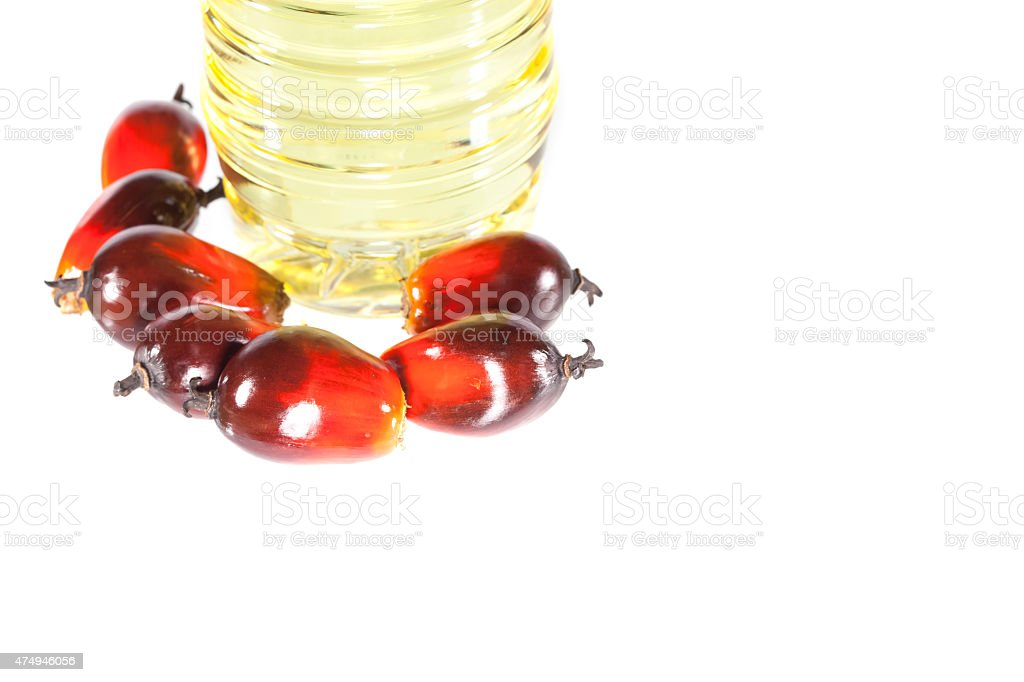 Palm Oil fruits with cooking oil isolated on white background stock photo