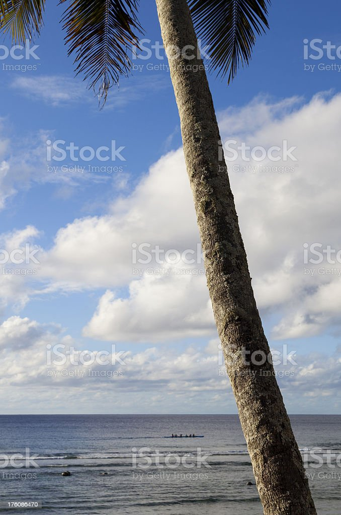 Palm & Outrigger royalty-free stock photo
