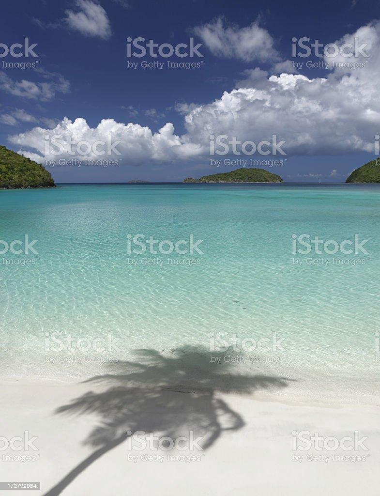 palm shadow at Maho Bay, St. John, USVI stock photo