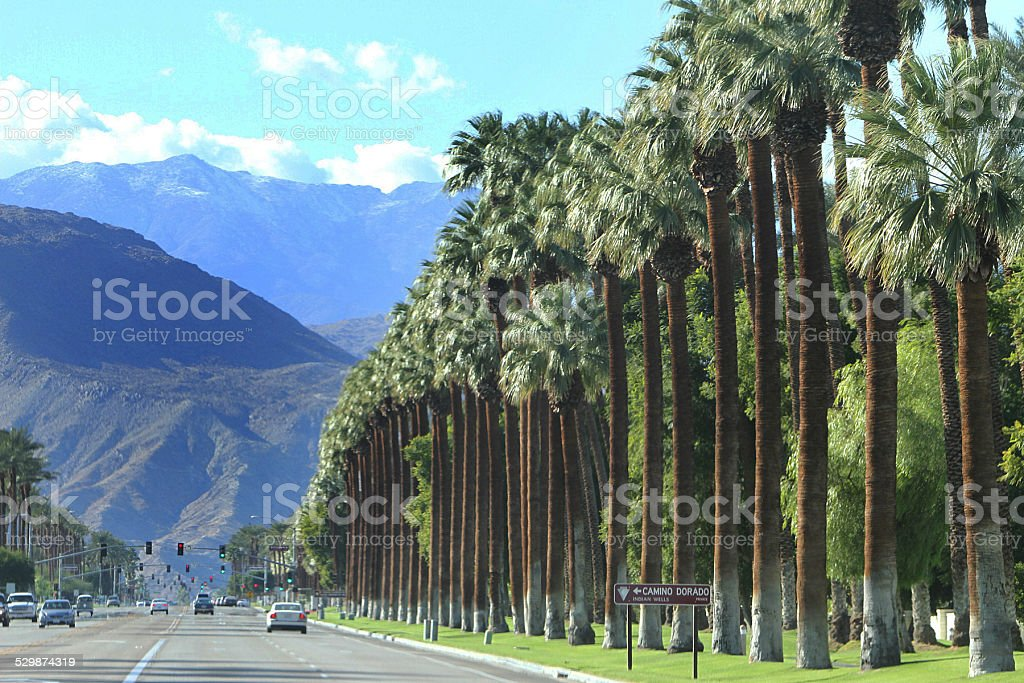 Palm Springs stock photo