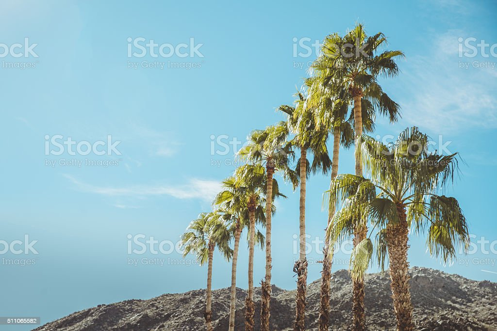 Palm Springs Vintage Mountains Palm Trees and Sky stock photo