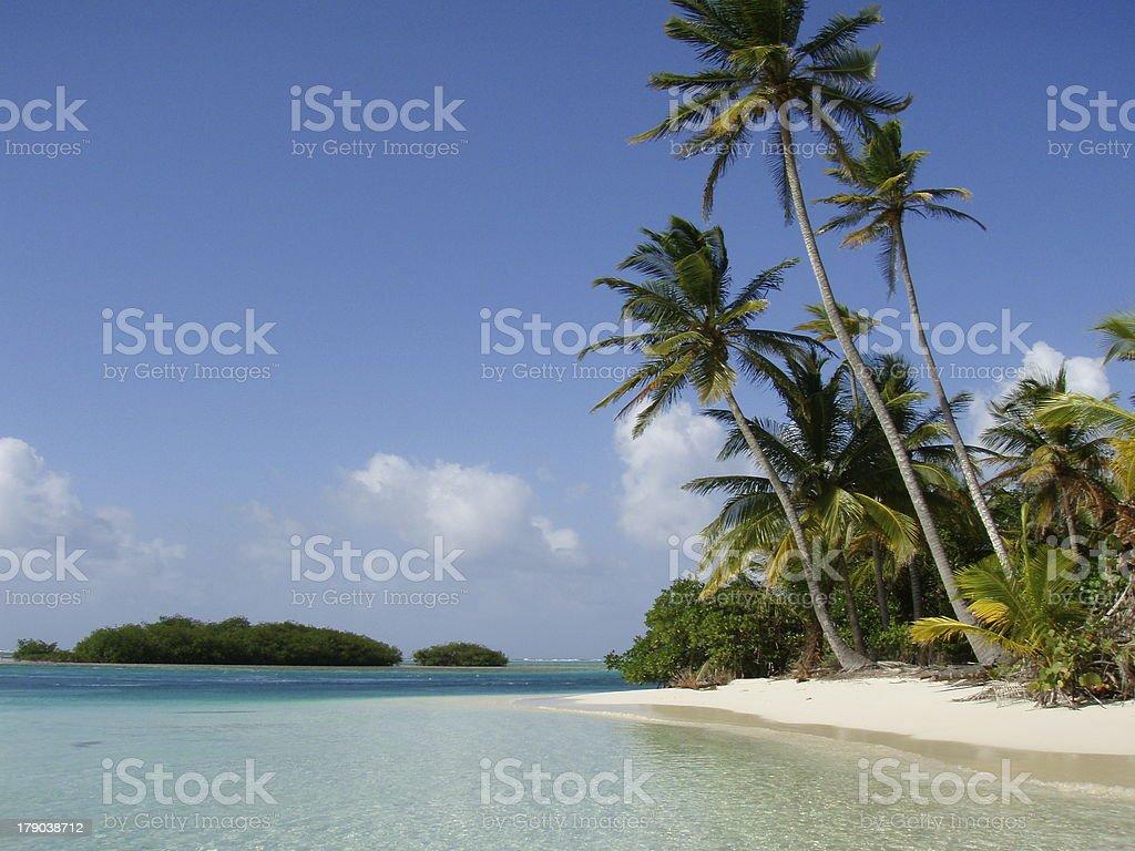 Palm Studded Beach in San Blas Islands royalty-free stock photo