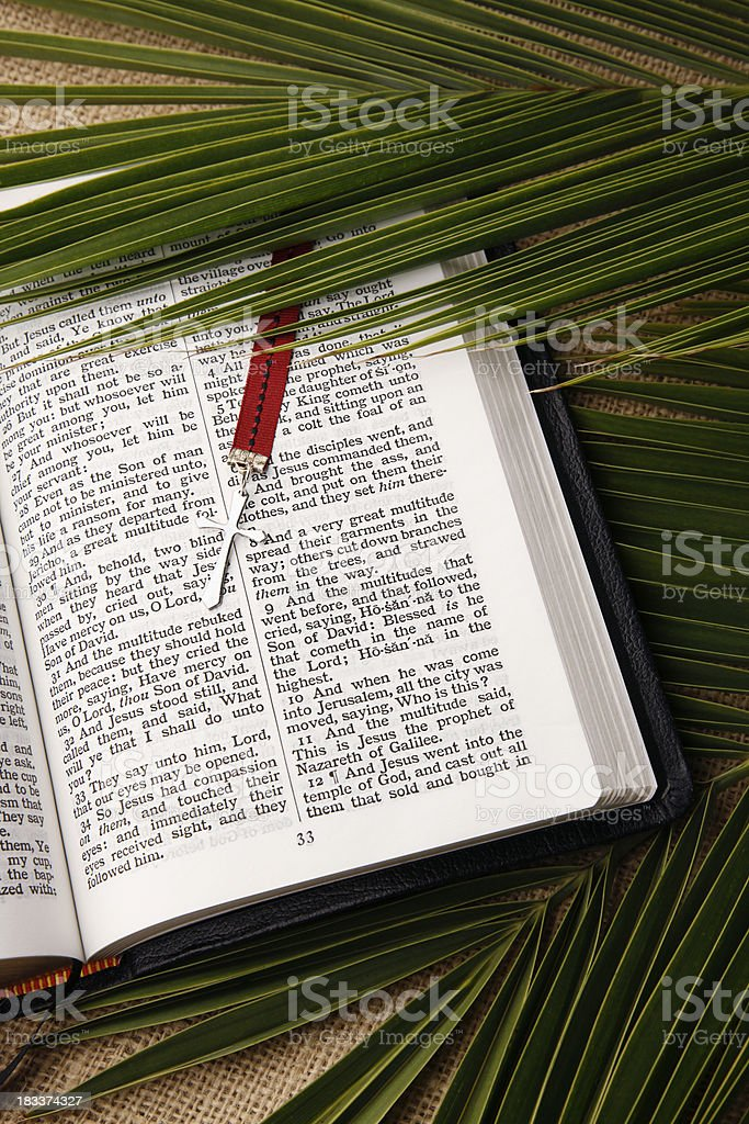 Palm Sunday KJV Bible and Cross stock photo