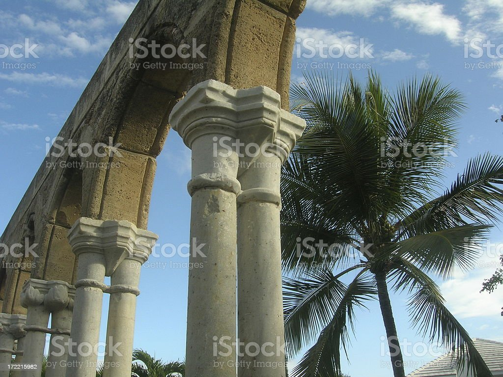 Palm Tree & Cloisters royalty-free stock photo