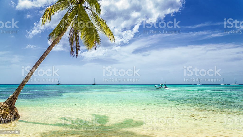 Palm Tree and Boat on Tropical Beach stock photo