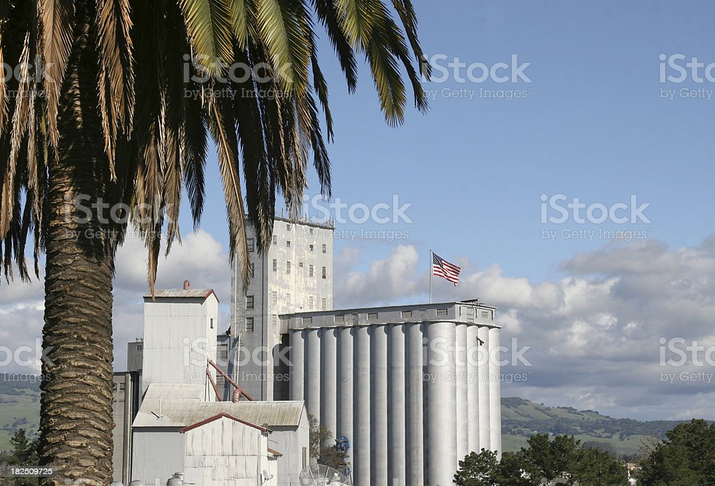 Palm Tree and Industry stock photo