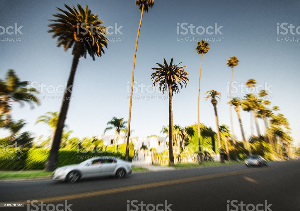 Palm tree at sunset on Beverly Hills, California - USA stock photo