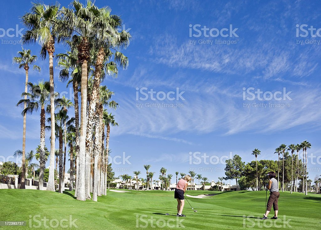 Palm Tree Golf Course royalty-free stock photo