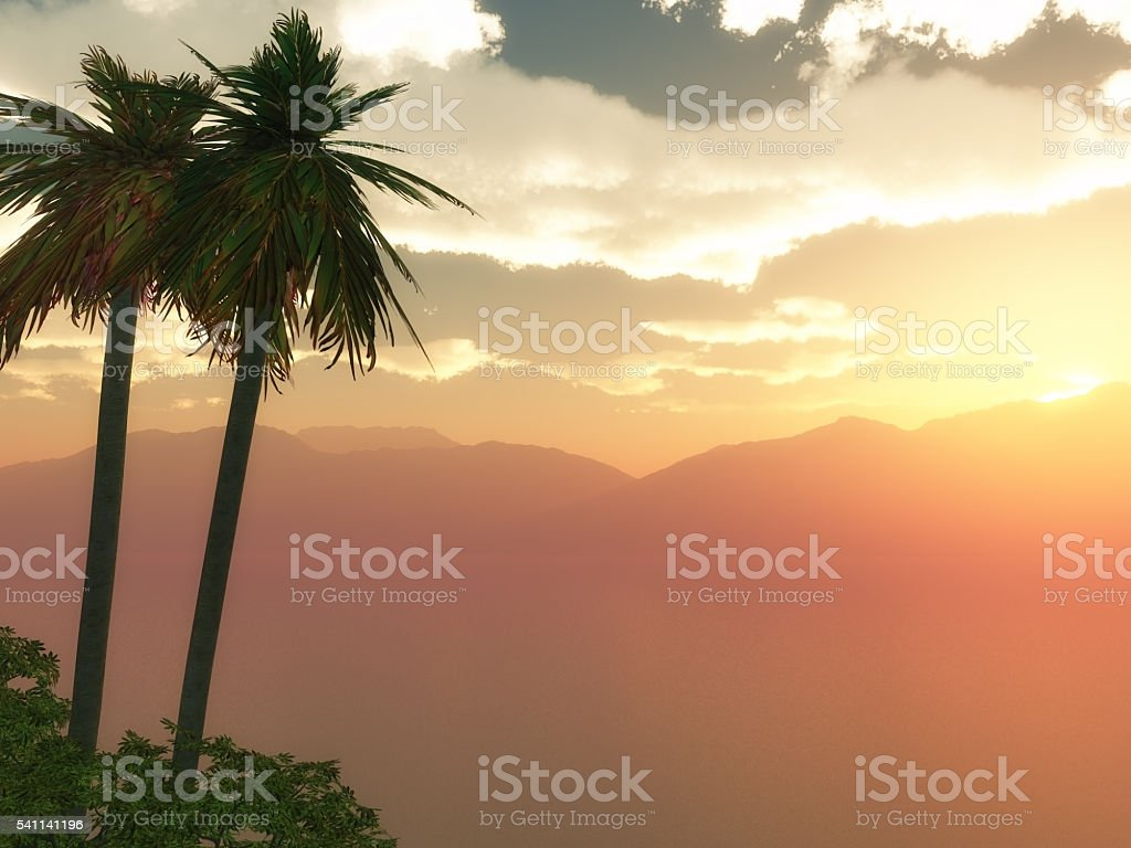 3D palm tree landscape stock photo