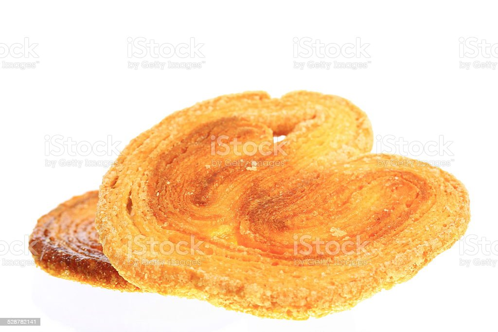 Palmier stock photo