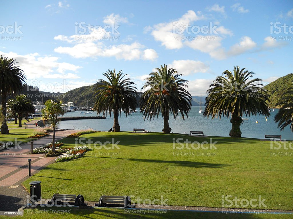 Palm Trees Along Waterfront stock photo