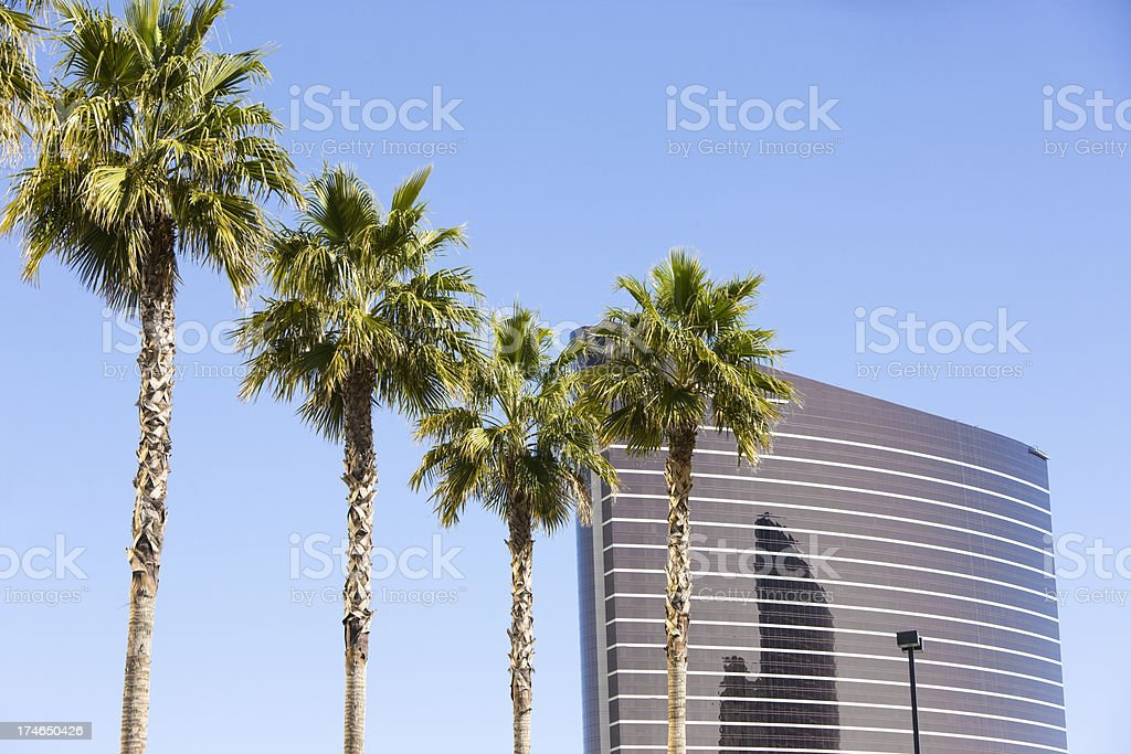 Palm Trees and Building royalty-free stock photo