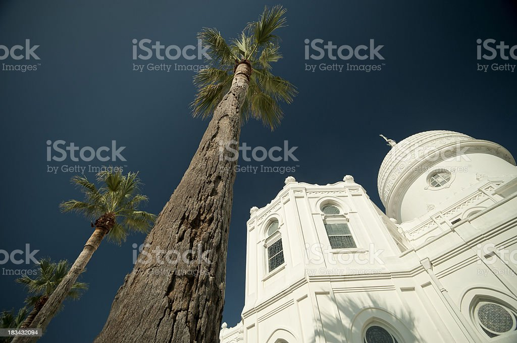 Palm Trees and Church stock photo