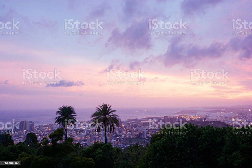 Palm Trees and city of Honolulu on Oahu at night stock photo