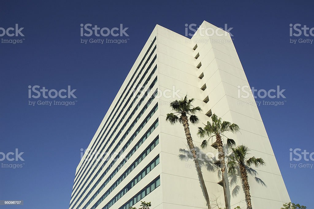 Palm Trees and Hotel stock photo