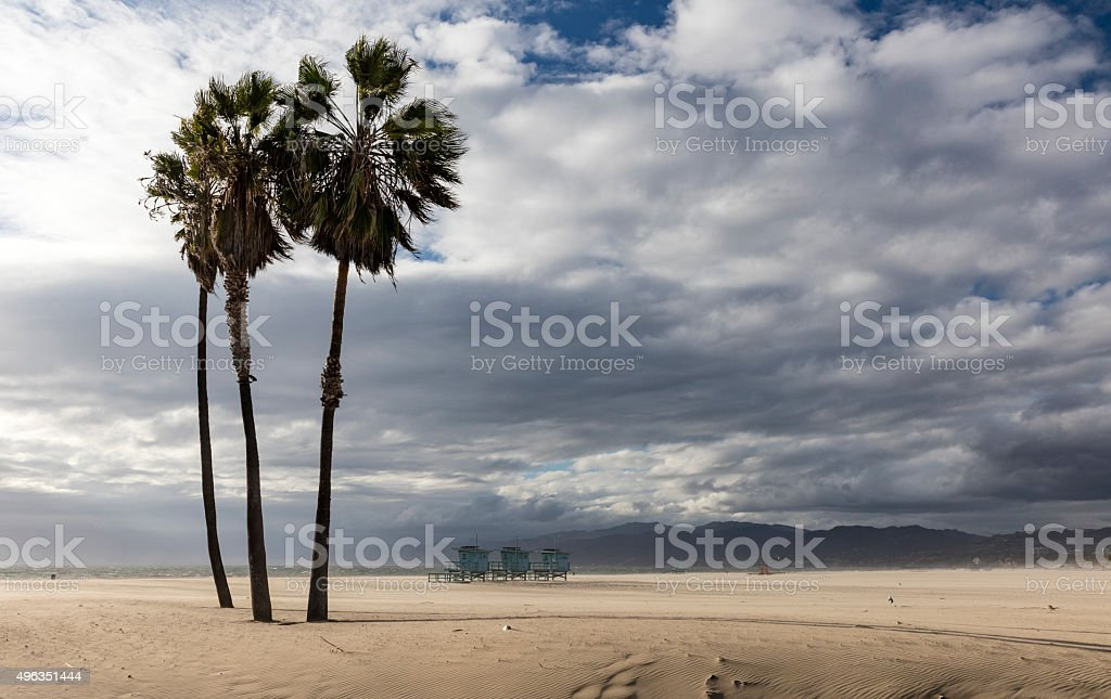 Palm Trees and Lifeguard Stations, Venice Beach, Los Angeles, California stock photo