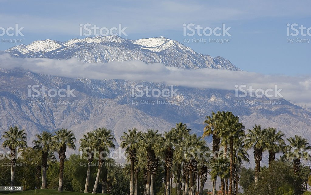 Palm Trees and Mountains royalty-free stock photo