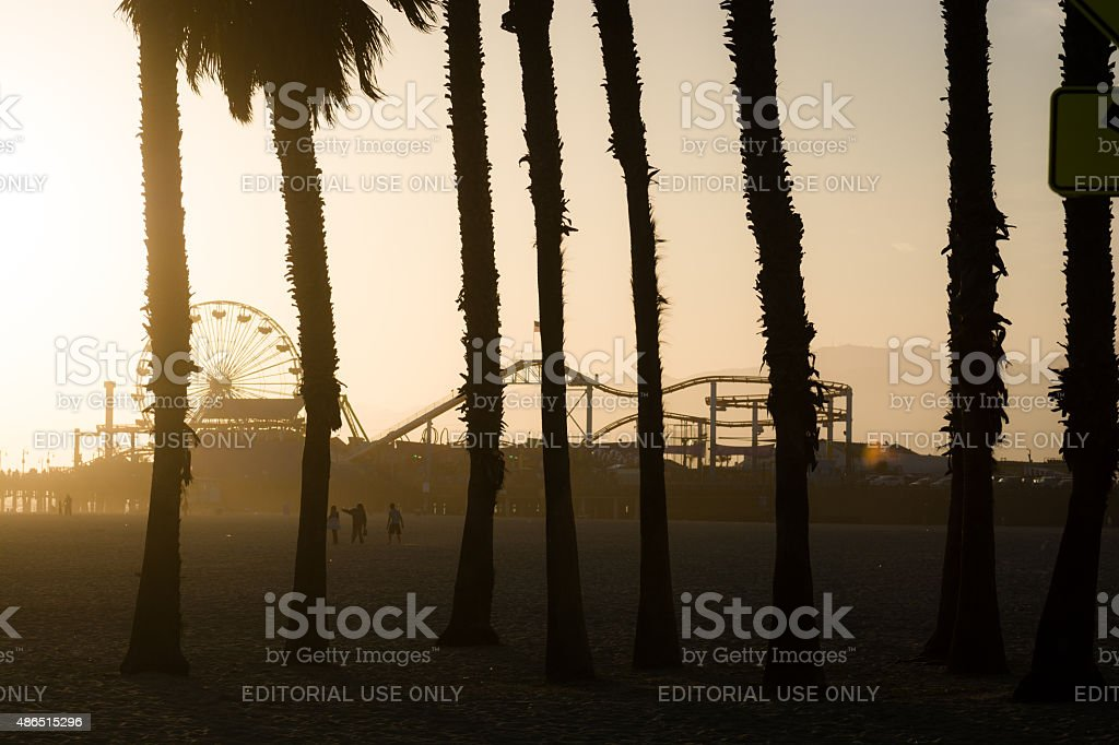 Palm trees and Santa Monica Pier in Los Angeles County stock photo